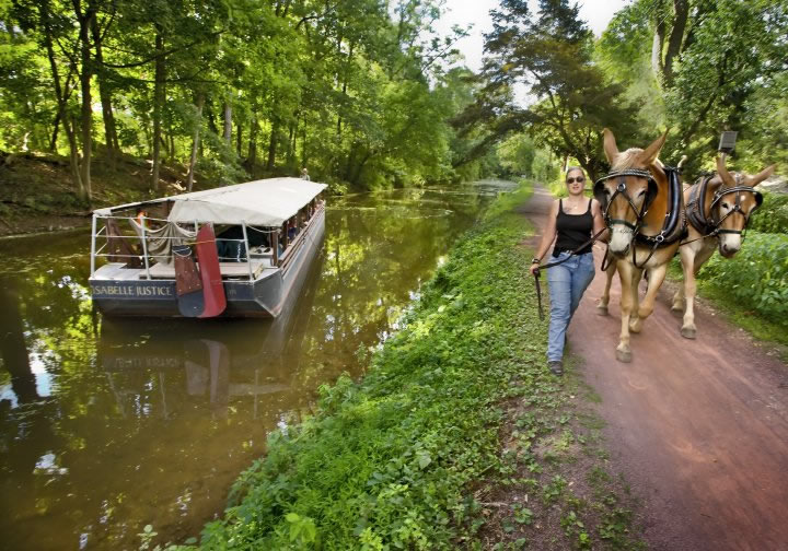 Mules pulling a barge along the Delaware Canal