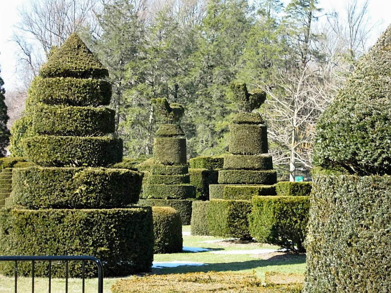 Sculpted plants at Longwood Gardens